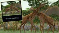 Wild Earth: African Safari (Bild: Majesco)
