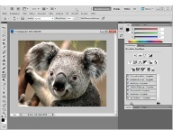 Adobe Photoshop (Screenshot: t-online.de) (Quelle: t-online.de)