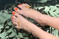 Skurrile Beauty-Trends: Fischpediküre. (Quelle: Thinkstock by Getty-Images)