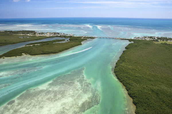 Florida Keys: Wandel zu umweltgerechtem Tauchen. Zu viel Tourismus, Tauchen und Fischkutter schadet den Florida Keys. (Quelle: Thinkstock by Getty-Images)