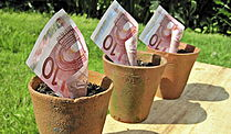  (Foto: Images Money)