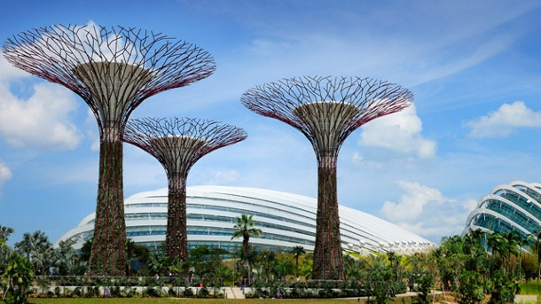 "Gardens by the Bay: Riesige Metallbäume in Singapur. Singapur: Stahlbäume des ""Gardens by the Bay"" (Quelle: dpa/tmn)"