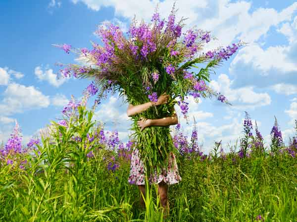 Frühling, Sommer, Blumenzeit (Quelle: Thinkstock by Getty-Images)
