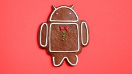 Android Gingerbread (Quelle: Hersteller)