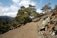 Troodos-Gebirge in Zypern. (Quelle: Thinkstock by Getty-Images)