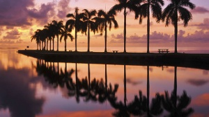 Sonnenuntergang in Florida (Quelle: Thinkstock by Getty-Images)