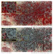 Satellitenbilder der Stadt Baga nach dem Angriff von Boko Haram (Quelle: Amnesty International/Digital Globe)