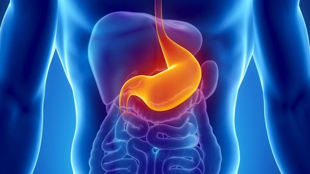 Magenschleimhautentzündung: Gastritis-Symptome erkennen. Bei einer Gastritis ist die Säureregulation im Magen gestört. (Quelle: Thinkstock by Getty-Images)