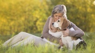 Tiere heilen die Seele  (Quelle: Thinkstock by Getty-Images)