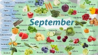 September (Quelle: t-online.de)