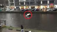 Dramatische Rettung in eiskalter Gracht. (Screenshot: Bit Projects)