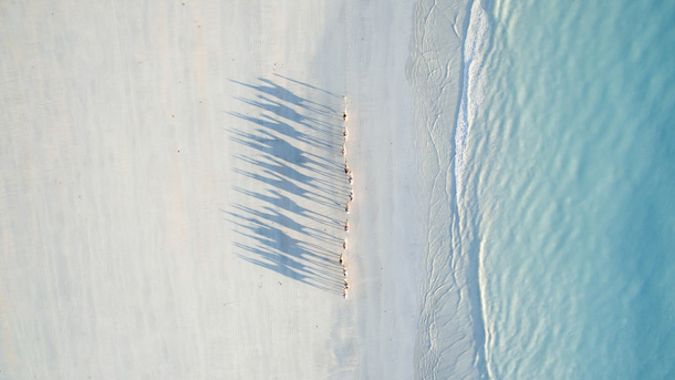 Cable Beach, Australien  (Quelle: Todd Kennedy/dronestagram)