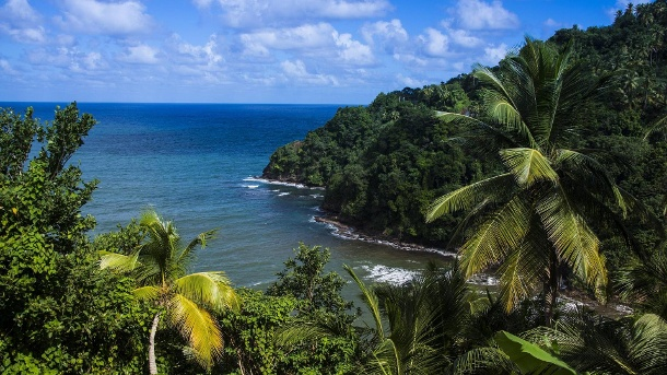 Pagua Bay in Dominica West Indies Karibik Zentral-Amerika (Quelle: imago)