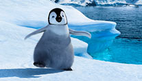 """Happy Feet"" läuft am Ostersonntag um 15:20 Uhr. (Foto: ARD)"