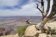 Grand Canyon: Wassermangel. (Quelle: Thinkstock by Getty-Images)
