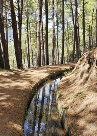 Levada auf Madeira. (Quelle: Thinkstock by Getty-Images)