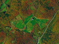 """Indian Summer"" in Reading im US-Bundesstaat Vermont (Quelle: DigitalGlobe)"