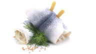 Rollmops   (Quelle: Thinkstock by Getty-Images)