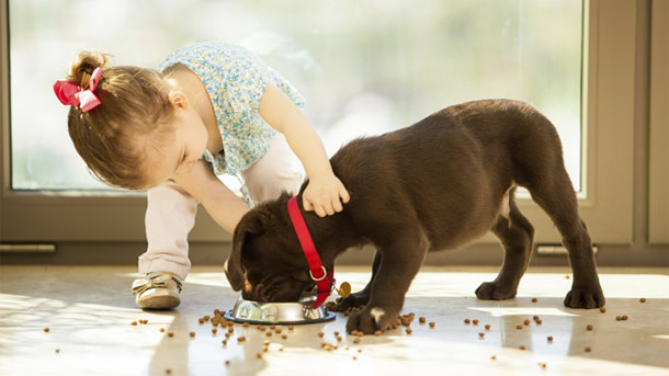 (Quelle: Thinkstock by Getty-Images)
