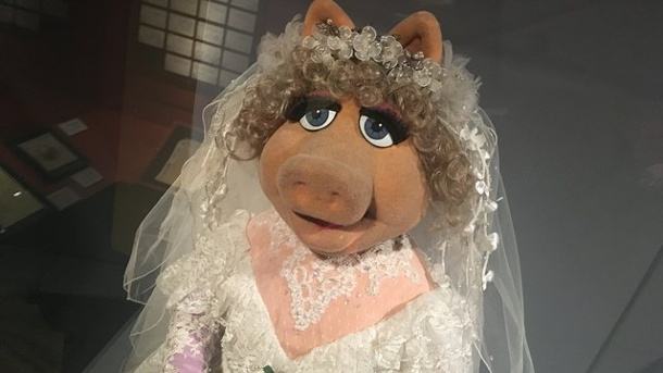 Ausstellungen: Retrospektive für Muppet-Meister in New York. In der Ausstellung des Museums of the Moving Image ist auch Jim Hensons Puppe Miss Piggy zu sehen.