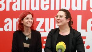 Die Linke in Brandenburg