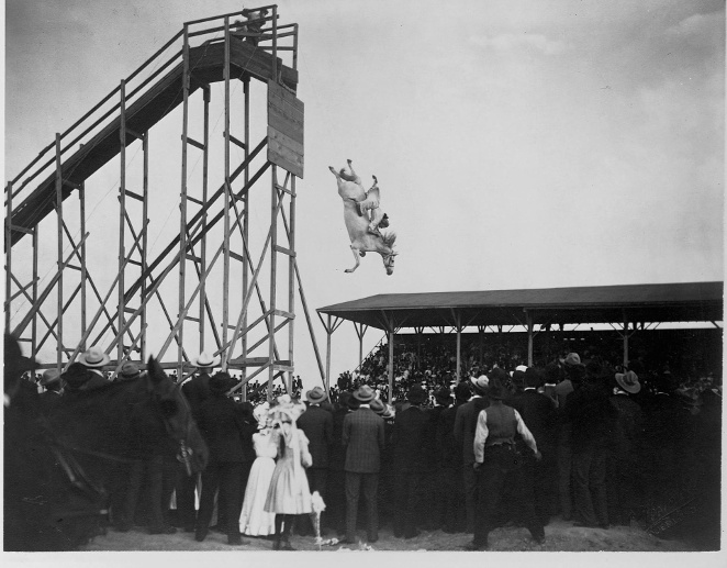 Horse and Rider High Dive (Quelle: Getty Images/Library of Congress/Corbis/VCG via Getty Images)