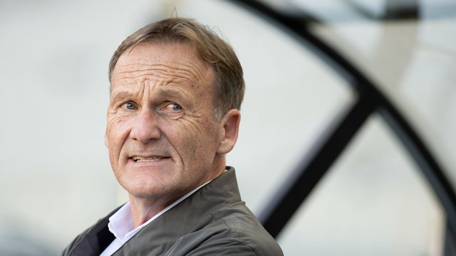 bvb boss watzke entschuldigt sich bei hopp. Black Bedroom Furniture Sets. Home Design Ideas