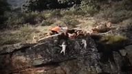 Skandalvideo: Hunde fallen samt Hirsch in die Schlucht (Quelle: Screenshot Bitprojects)