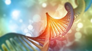 DNA-Strang (Quelle: Thinkstock by Getty-Images/kirstypargeter)