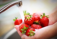 Erbeeren unterm Wasserhahn (Quelle: Getty Images/gilaxia)