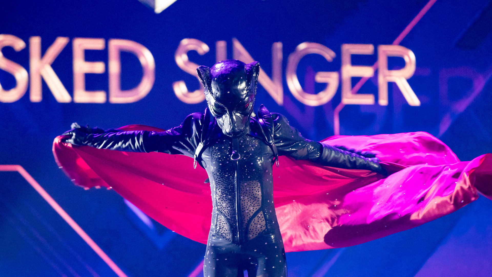 The Masked Singer Panther