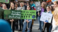Fridays-For-Future-Demonstration in Frankfurt am Main. (Quelle: imago images)